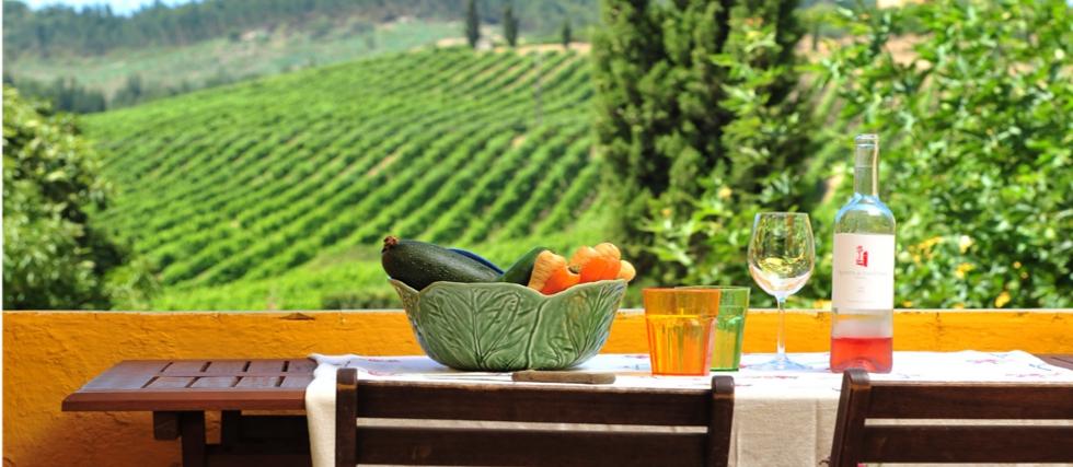The Yeatman Hotel In Porto Luxury Wine Spa Hotel