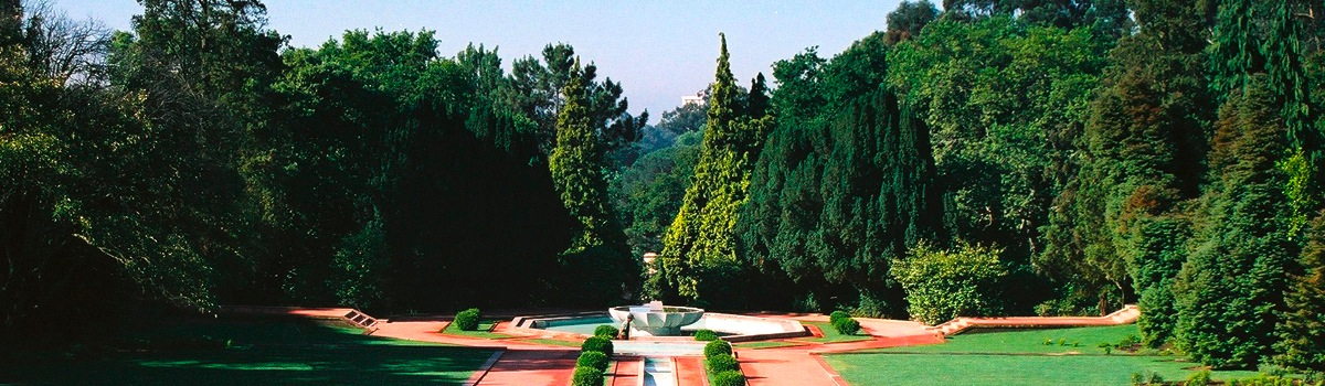 Park and Garden of the Serralves Foundation