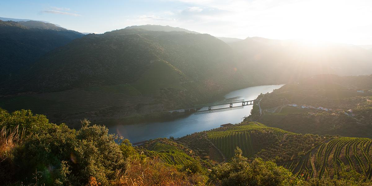 Messias, The Yeatman, Bairrada e Douro