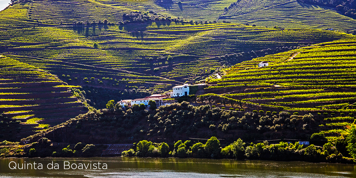 Quinta da Boavista, Lima Smith, Wine Partner, The Yeatman, Porto e Douro