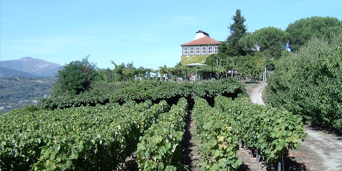 Quinta da Massorra